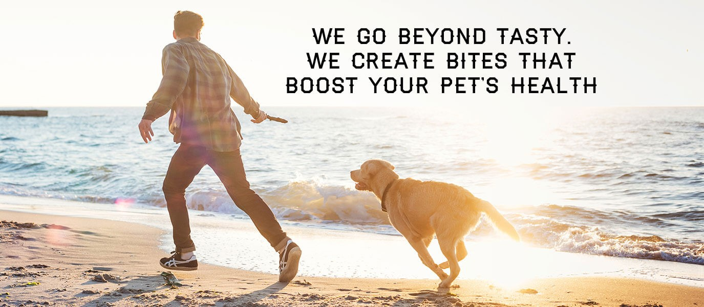 Man holding a stick and running on a beach with a large dog. Text says: We go beyond tasty treats. We create supplements that boost your pets health.